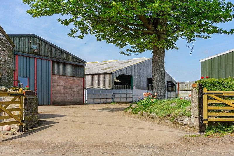 Farm Yard