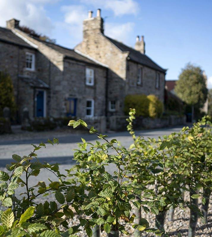 Cottage Barningham