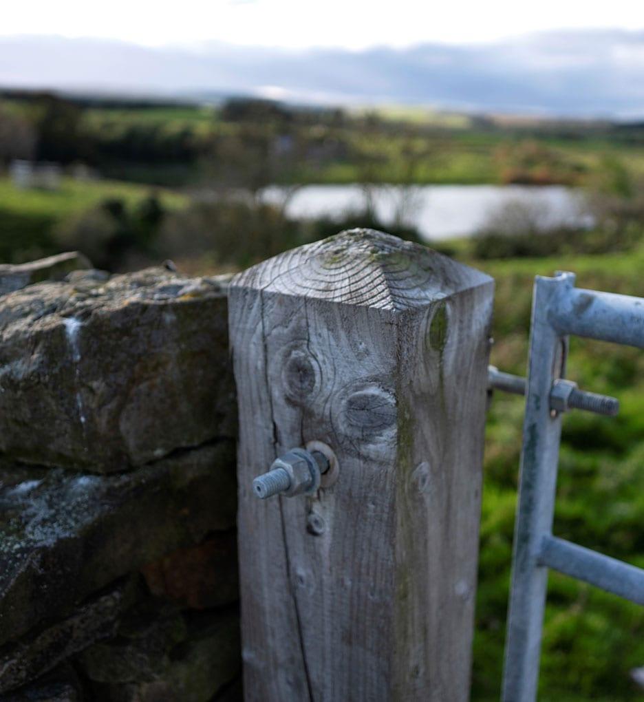 Wall and gatepost
